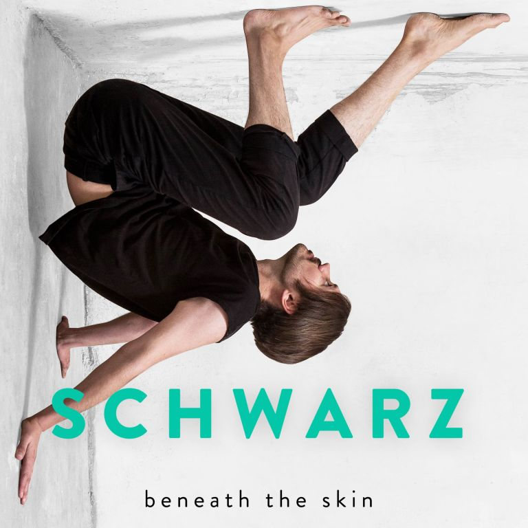 SCHWARZ - Beneath The Skin