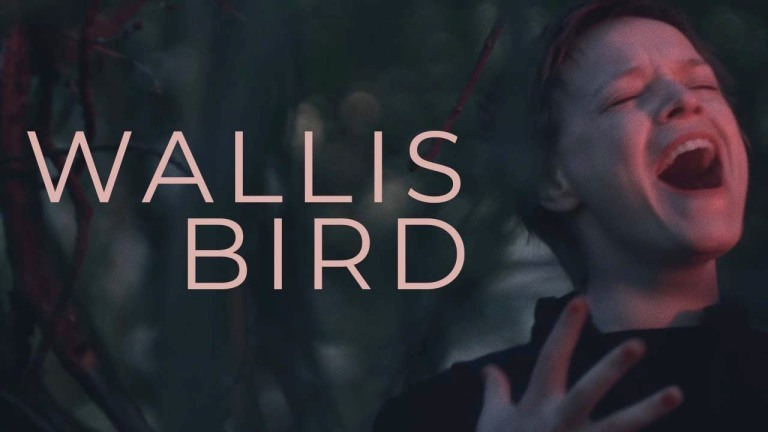 Wallis Bird - As The River Flows