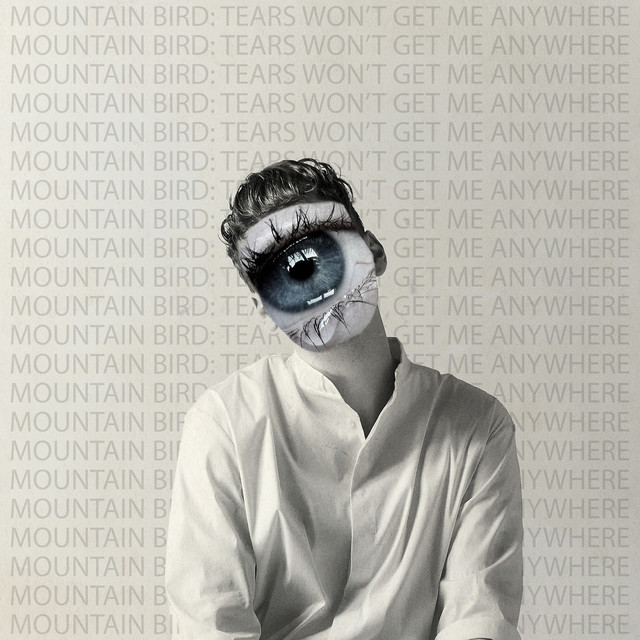 Mountain Bird - Tears Won't Get My Anywhere