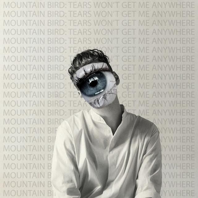 Mountain Bird - Tears Won't Get My Anywhere