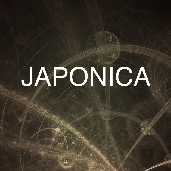 Japonica - Hygge