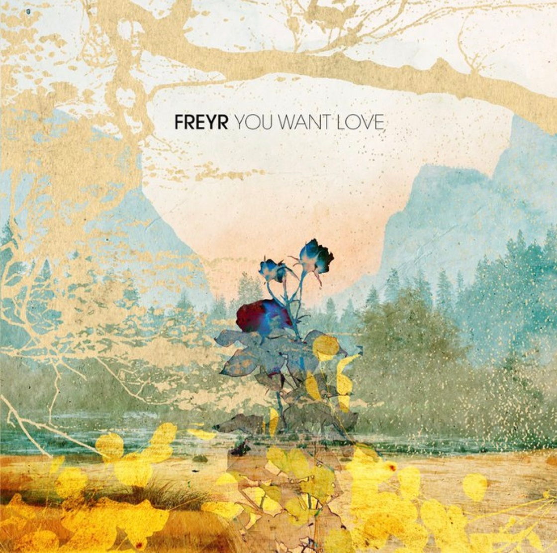 Freyr - You Want Love